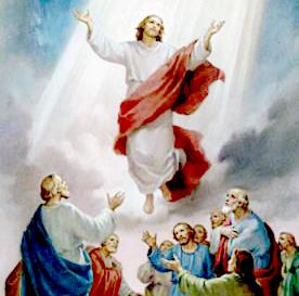 Thầy ở cùng anh em mọi ngày (24.5.2020 – Chúa Nhật 7 Phục Sinh : Chúa thăng thiên)
