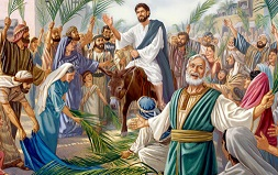 Chúc tụng Đức Vua (14.4.2019 – Chúa Nhật Lễ Lá)