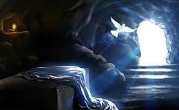Ông đã thấy và ông đã tin (21.4.2019 – Chúa Nhật Phục Sinh, Năm C)