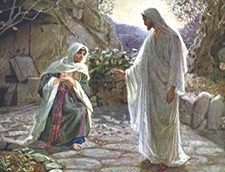 Họ để Người ở đâu? (22.7.2019 – Thứ Hai - lễ Thánh Maria Mađalêna)