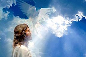 Hài lòng về Người (18.7.2020 – Thứ Bảy Tuần 15 Thường Niên)
