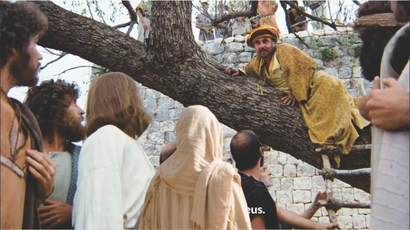 Học hỏi Phúc âm: Chúa nhật 31 Thường niên năm C