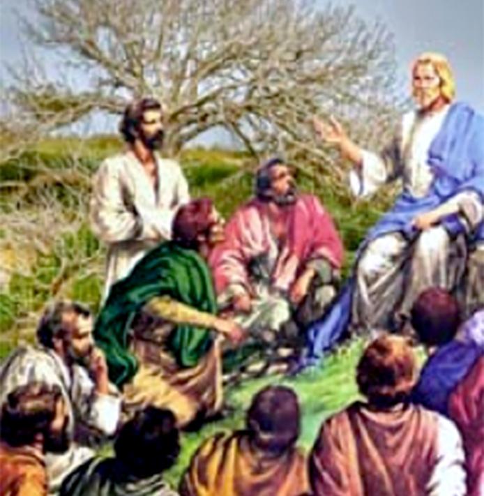 Xem cây vả (27.11.2020 – Thứ Sáu Tuần 34 Thường niên)