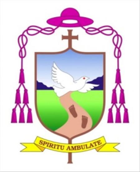 Thư mục vụ của Đức giám mục giáo phận Ban Mê Thuột về Năm Đức Tin