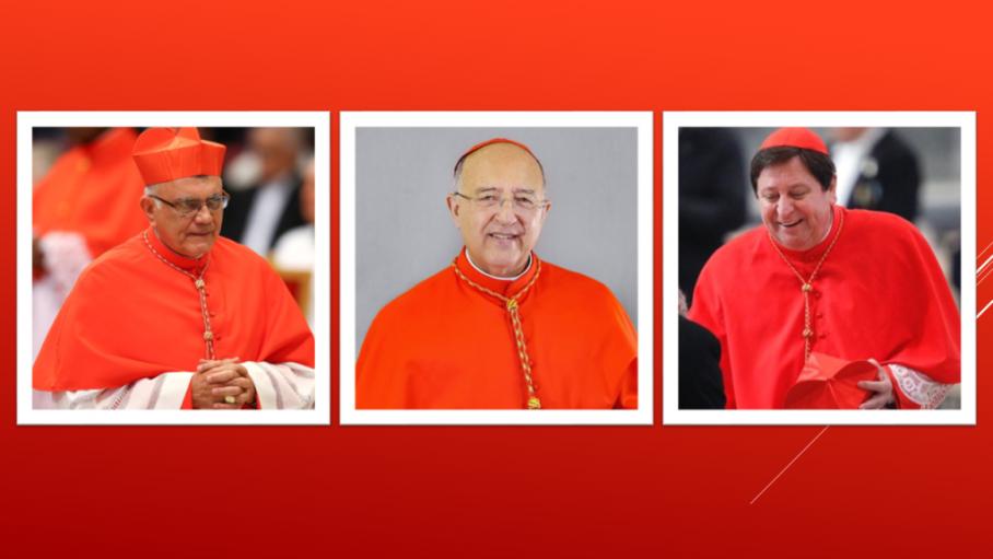 Đức Thánh Cha bổ nhiệm ba vị Chủ tịch thừa ủy cho Thượng Hội đồng Giám mục Amazzonia